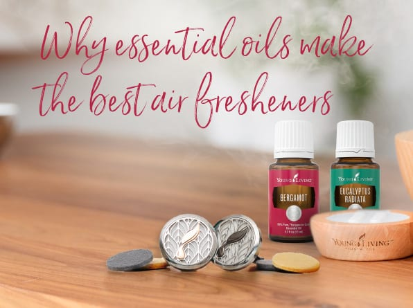 Why essential oils make the best air fresheners